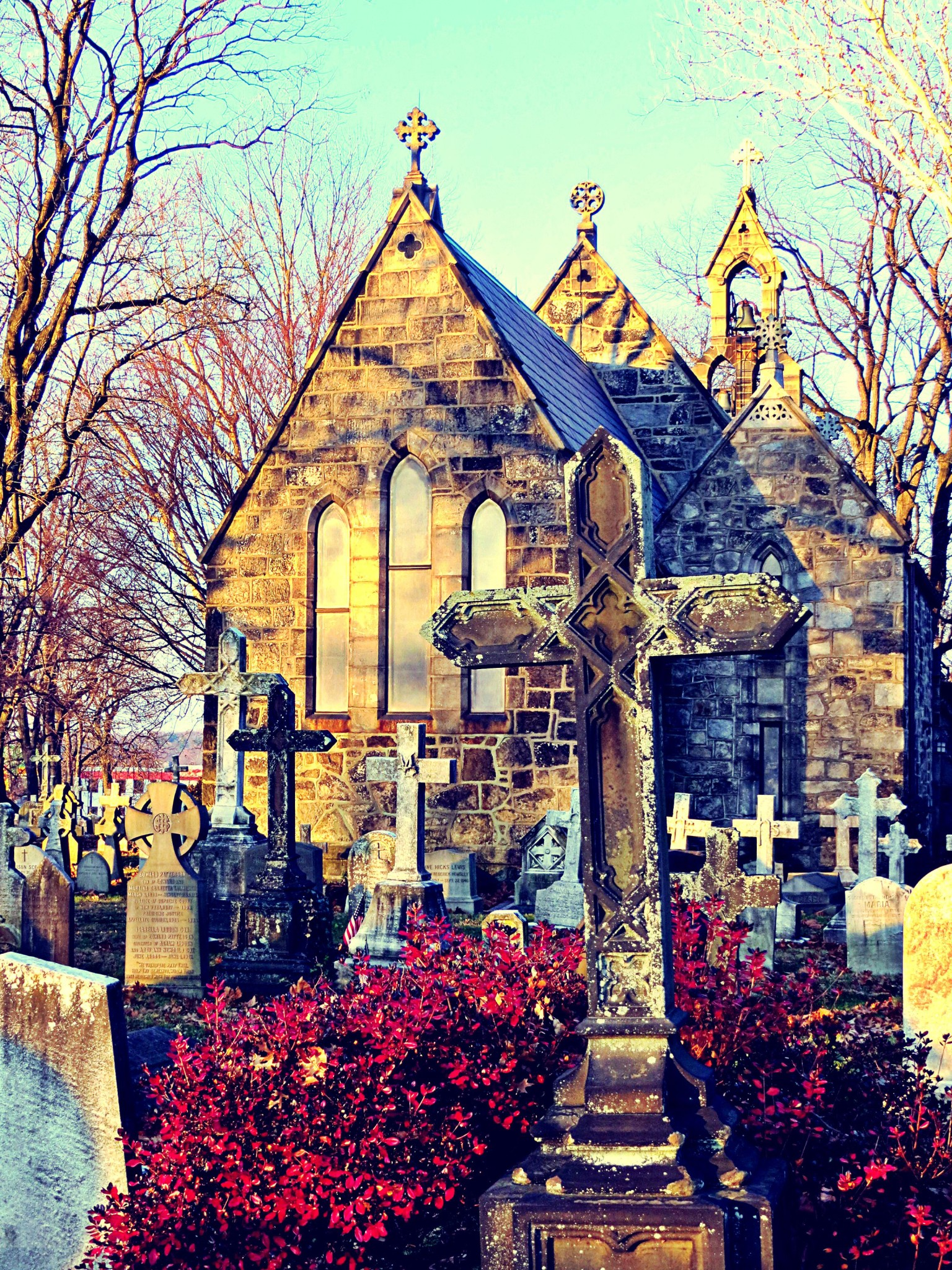 East Falls Local 12-13 St James Less chapel graves red bush closer