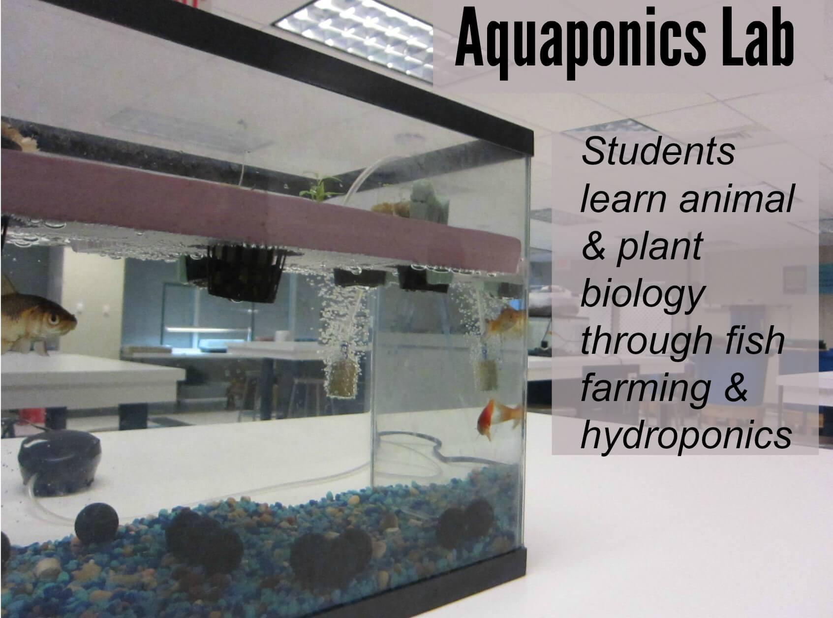 East Falls Local 1-12 aquaponics text