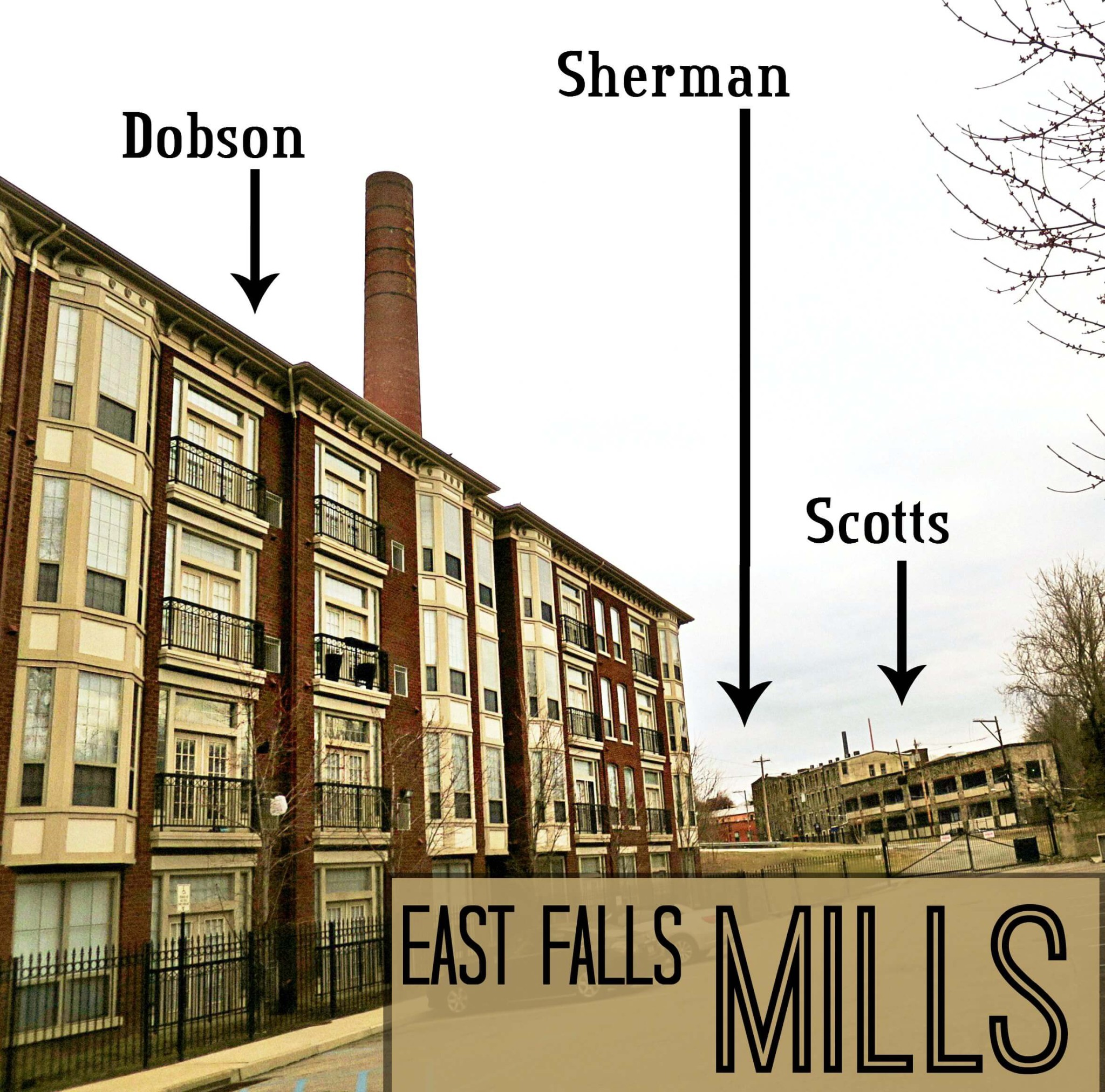 EastFallsLocal Mills complex scott ridge survey crop TEXT