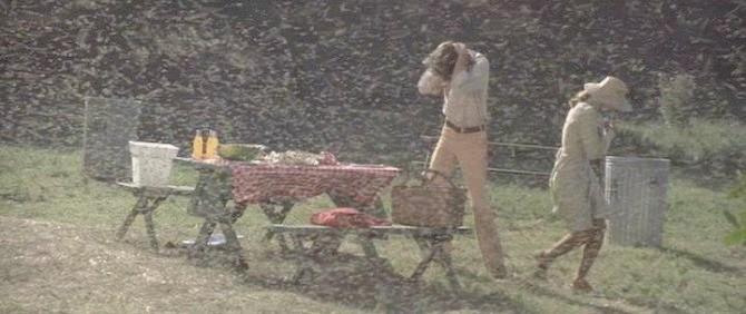 Eastfallslocal.The Swarm movie