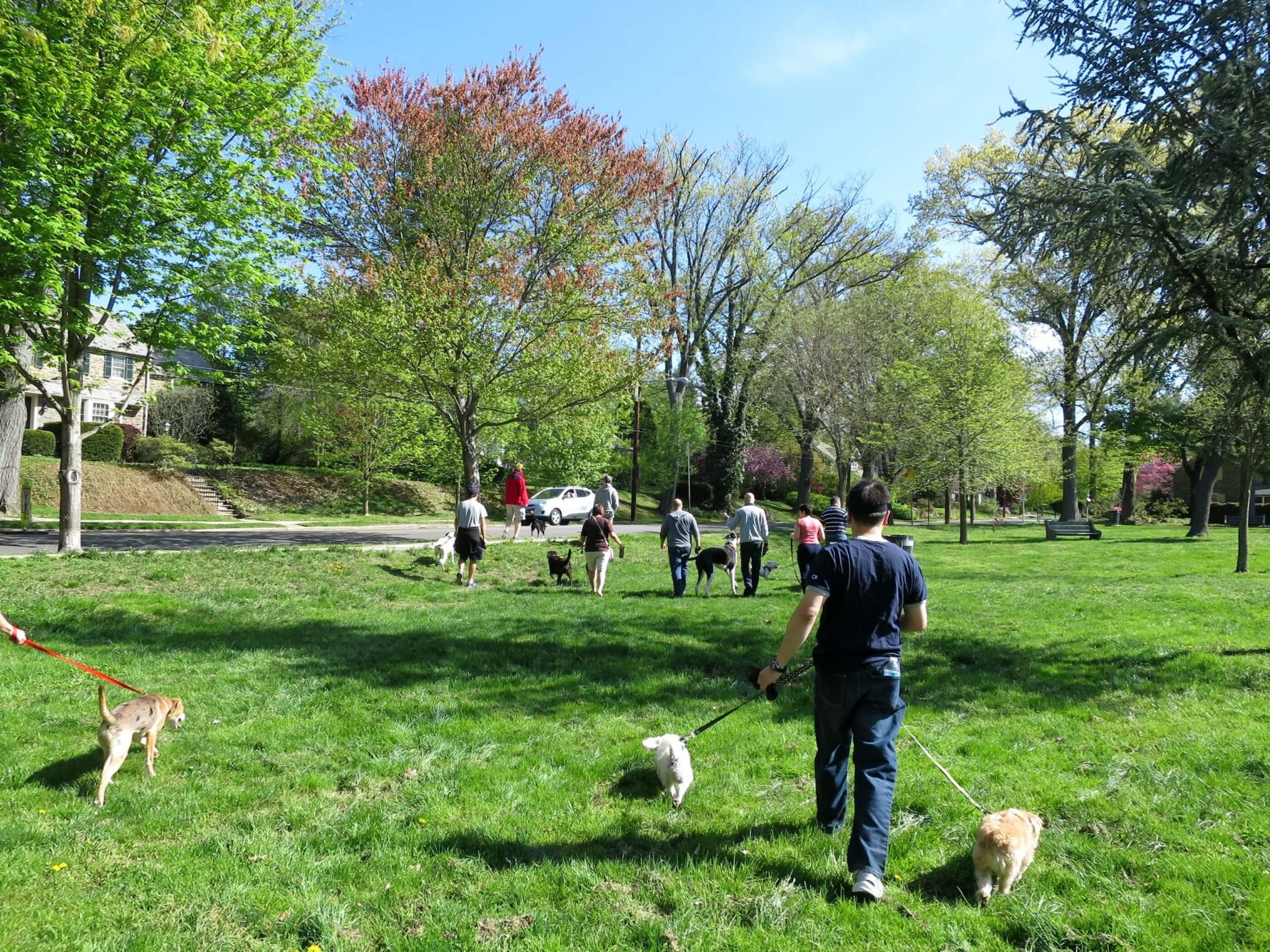 Eastfallslocal 5-3 pack walk starts off mcmichael park behind