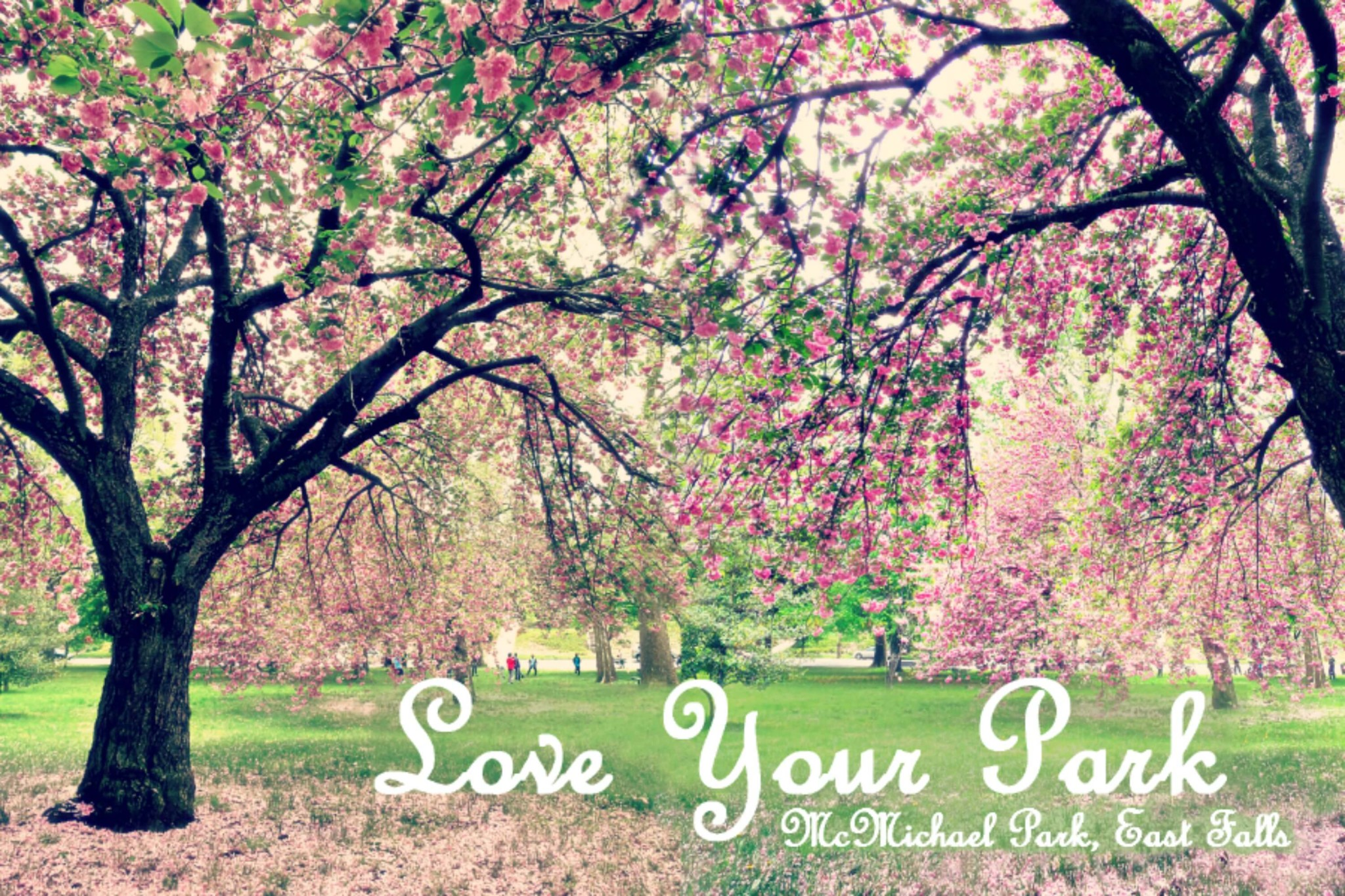 Eastfallslocal 5-6 love your part double trees blended Love Your Park text full size