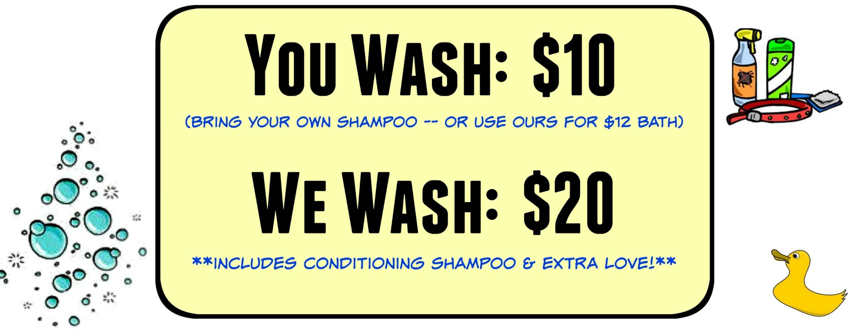 Eastfallslocal rub a dub dog collage petwash CROP bottom shampoo added