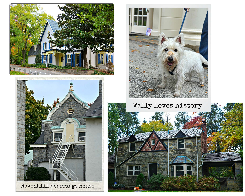 Eastfallslocal architecture collage
