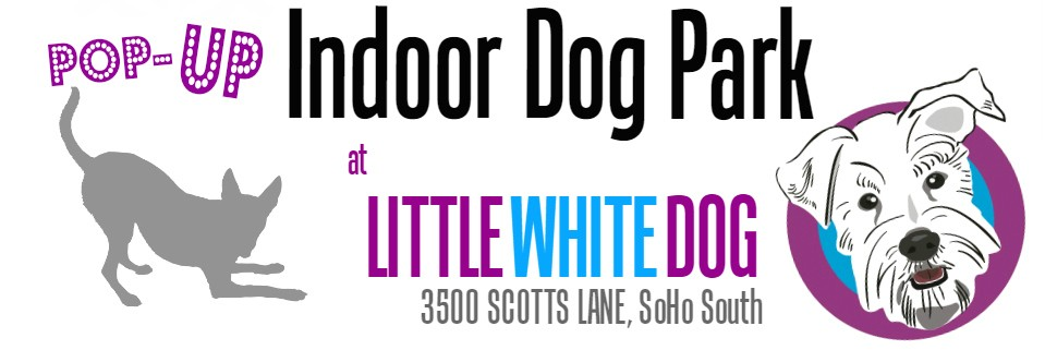 Eastfallslocal little white dog pop up indoor dog park address