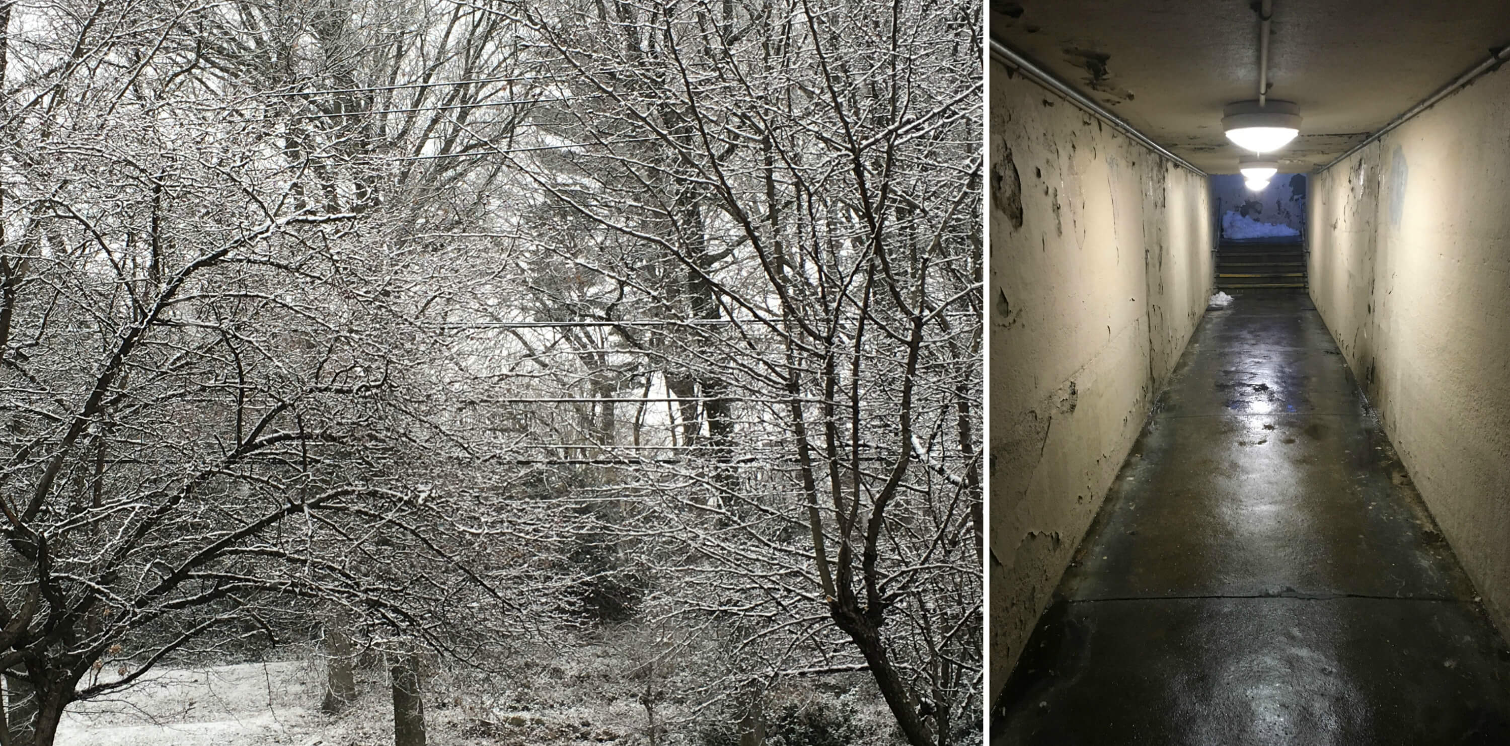 EastFallsLocal Katherine collage snow subway