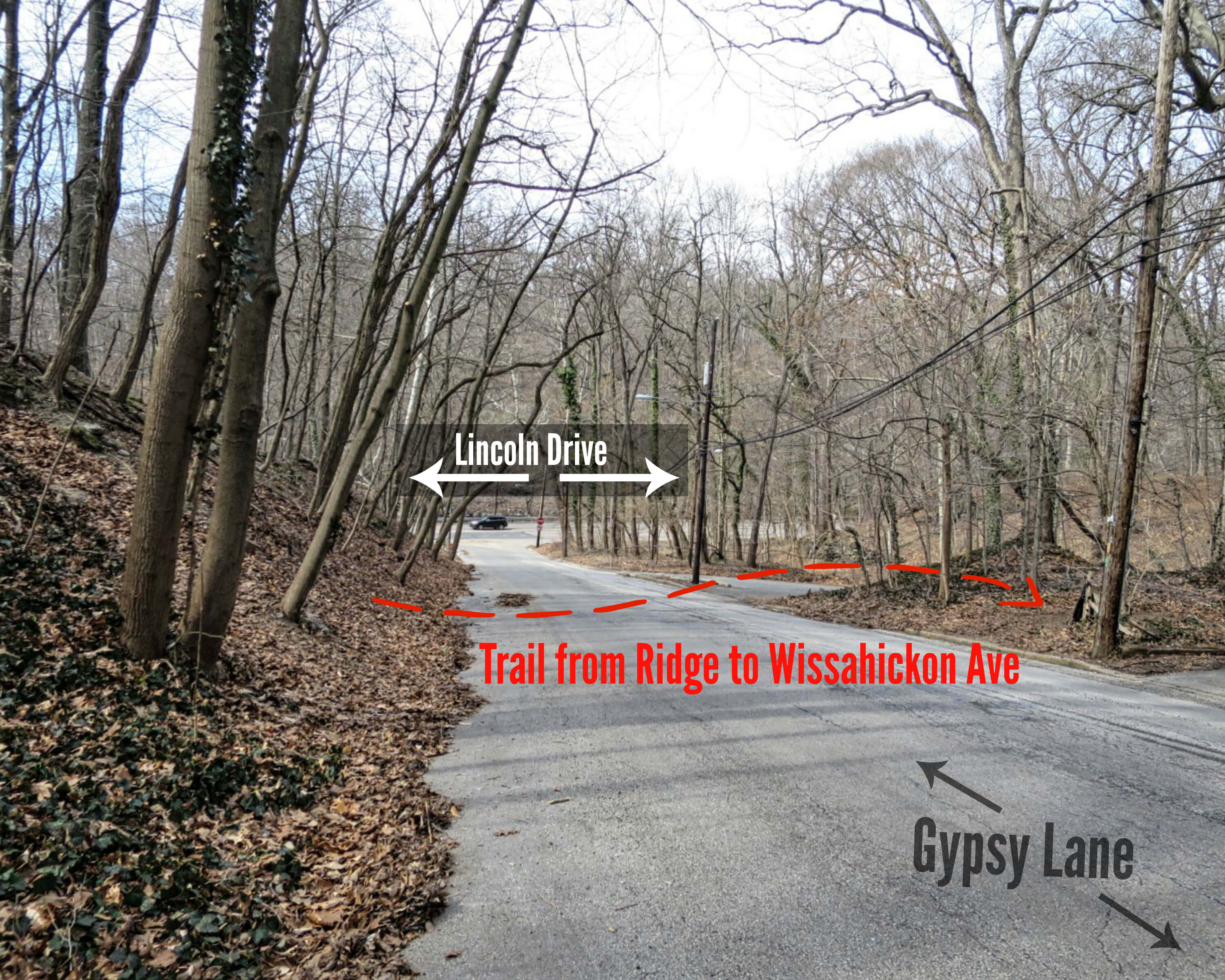 EastFallsLocal collage trail from ridge to wissahickon ave gypsy lane